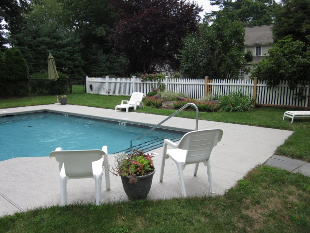 Our pool's gorgeous in the summer, by the way.