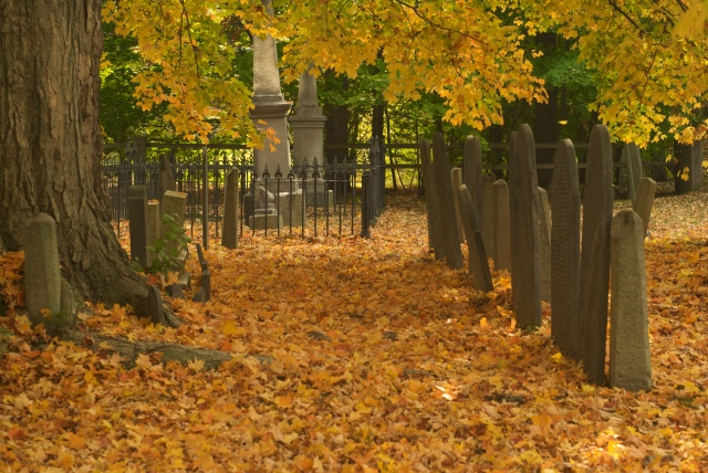 Well, at least it's a pretty time of year to visit a cemetary, if not the least creepy. Courtesy: Andrew Lin/Flickr